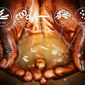 Hands cupping dirty water
